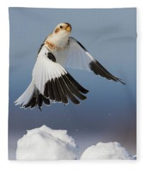 Snow Bunting In Winter Fleece Blanket