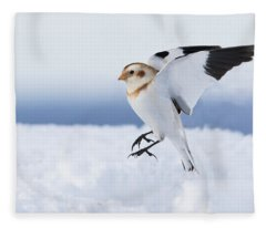 Snow Bunting Landing Fleece Blanket