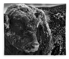 Snow Covered Ice Bull Fleece Blanket