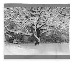 Snow Dusted Tree Fleece Blanket
