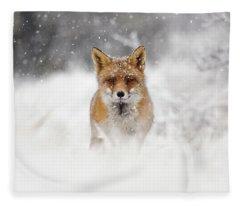 Snow Fox Series - Red Fox In A Blizzard Fleece Blanket