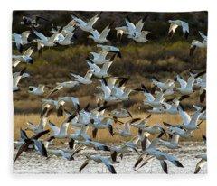 Snow Geese Flock In Flight Fleece Blanket