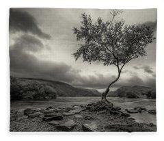 Snowdonia Wales The Lonely Tree Fleece Blanket