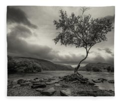 Snowdonia Wales The Lonely Tree Fleece Blanket