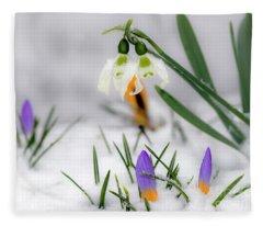 Snowdrops And Crocus Fleece Blanket