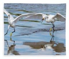 Snowy Egret Chase 1381-111317-1cr Fleece Blanket