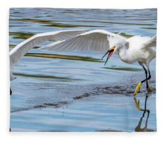 Snowy Egret Chase 1381-111317-2cr Fleece Blanket