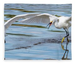 Snowy Egret Chase 1381-111317-2cr Fleece Blanket