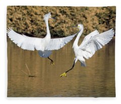Snowy Egret Fight 3632-112317-1cr Fleece Blanket