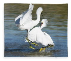 Snowy Egret Fight 3636-112317-1cr Fleece Blanket