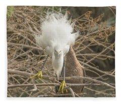 Snowy Egret Fluffed Up 7285-120117-1cr Fleece Blanket