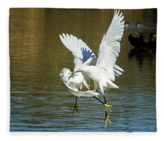 Snowy Egrets 3621-112317-1cr Fleece Blanket