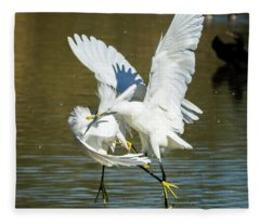 Snowy Egrets 3621-112317-2cr Fleece Blanket