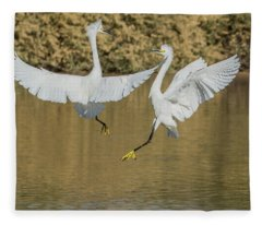 Snowy Egrets Dispute 3632-112317-1cr Fleece Blanket