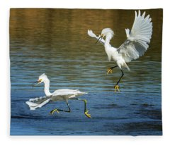 Snowy Egrets Fight 3622-112317-2cr Fleece Blanket