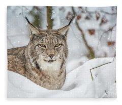 Snowy Lynx Fleece Blanket