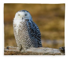 Snowy On Log Fleece Blanket