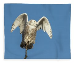 Snowy Owl 2018-17 Fleece Blanket