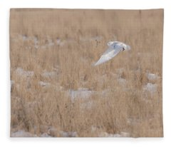 Snowy Owl 2018-19 Fleece Blanket