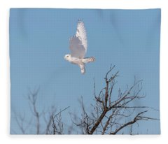 Snowy Owl 2018-5 Fleece Blanket