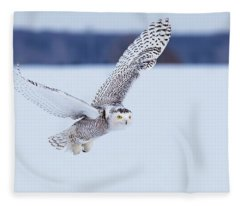 Snowy Owl Hunting Fleece Blanket
