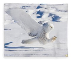 Snowy Owl Pouncing Fleece Blanket