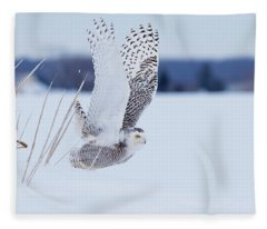 Snowy Take Off Fleece Blanket