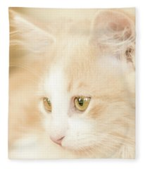 Soft And Dreamy Fleece Blanket