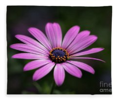 Soft Petals Fleece Blanket