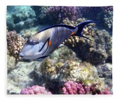 Sohal Surgeonfish 5 Fleece Blanket