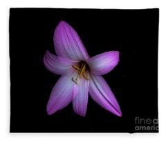 Solo In Pink Fleece Blanket