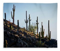 Sonoran Desert Saguaro Slope Fleece Blanket