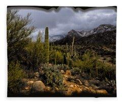 Sonoran Winter No.1 Fleece Blanket