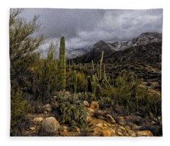 Sonoran Winter No.3 Fleece Blanket