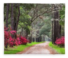 South Carolina Lowcountry Spring Flowers Dirt Road Edisto Island Sc Fleece Blanket