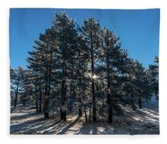 Sparkilian Fleece Blanket