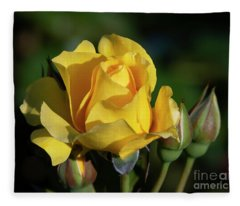 Sparkle N Shine Rose 6 Fleece Blanket
