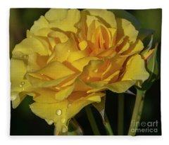 Sparkle N Shine Rose 7 Fleece Blanket