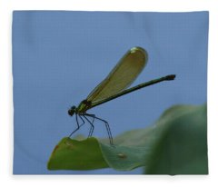 Sparkling Jewelwing #2 Fleece Blanket