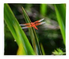 Sparkling Red Dragonfly Fleece Blanket