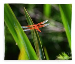 Sparkling Red Dragonfly Fleece Blanket
