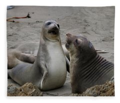 Sparring Seals  Fleece Blanket