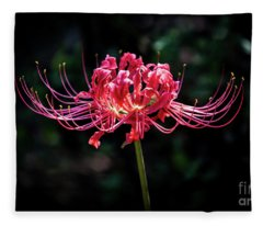 Spider Lily Fleece Blanket