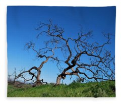 Split Single Tree On Hillside Fleece Blanket