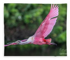 Spoony In Flight Fleece Blanket