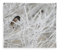 Spotted Towhee In Winter Fleece Blanket