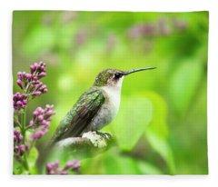 Spring Beauty Ruby Throat Hummingbird Fleece Blanket