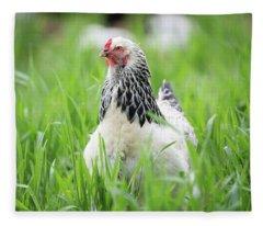 Spring Checken Fleece Blanket