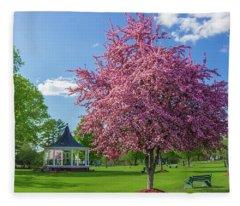 Spring In Bandstand Park Fleece Blanket
