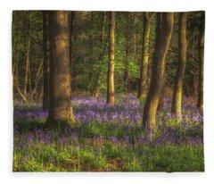 Spring In Haywood No 1 Fleece Blanket